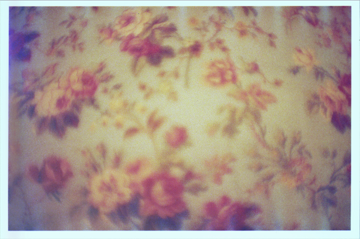 floral_pattern_photo